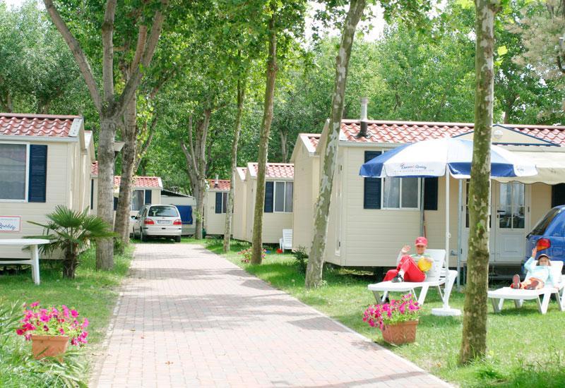 Camping Oasi