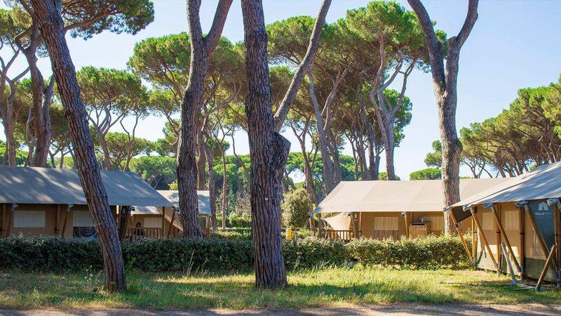 Luxe accommodatie tent natuur