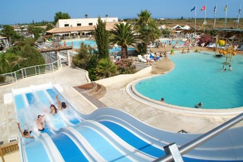 Slides Pool Landscape Palm Trees