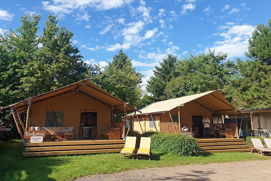 Luxus Campingzelte mit Trrasse und Liegestühlen Grün Natur