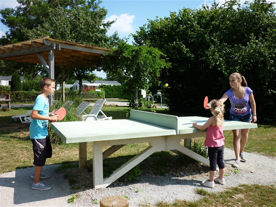 Tischtennis Sport Freizeitgestaltung
